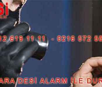 desi alarm bilecik 350x300 - Desi Alarm Bilecik