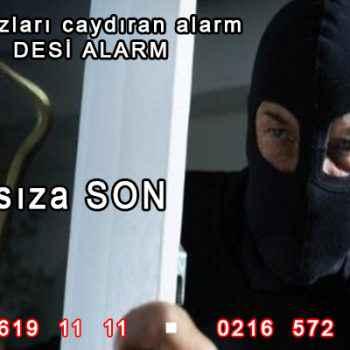 desi alarm erzurum 350x350 - Desi Alarm Erzurum