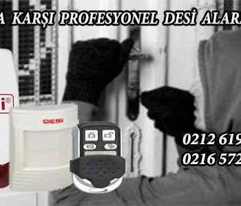 desi alarm muğla 350x300 - Desi Alarm Muğla