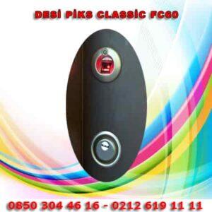Desi-Piks-Classic-Fc100-Pe-1