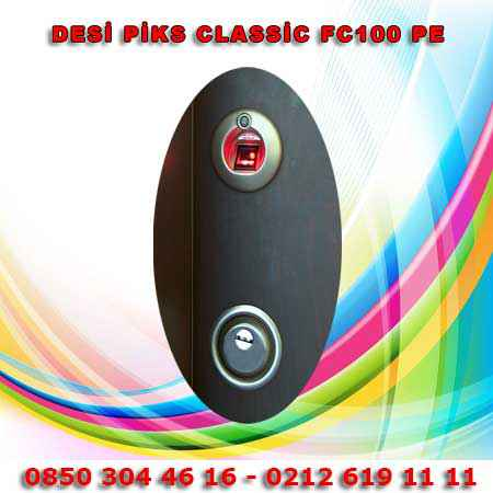 Desi-Piks-Classic-Fc100-Pe