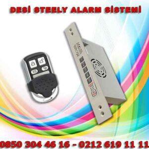 desi-steely-alarm