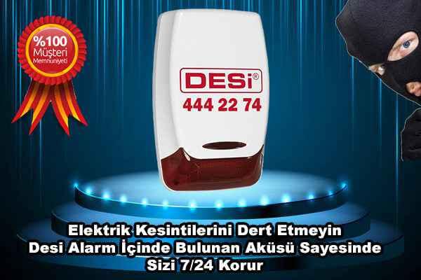 Desi Alarm Cihazları