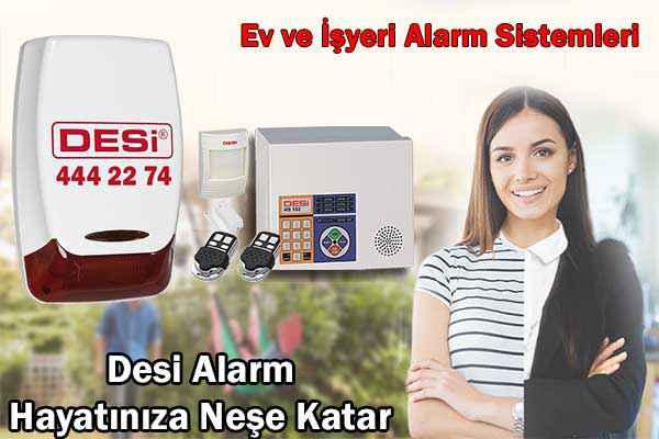 Desi Hırsız Alarm Sistemleri