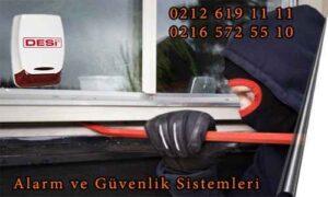 site icin desi 300x180 - Desi Alarm Başakşehir