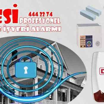 isyeri alarmi desi 350x350 - İşyeri Alarm Sistemleri ile işinizi koruyun